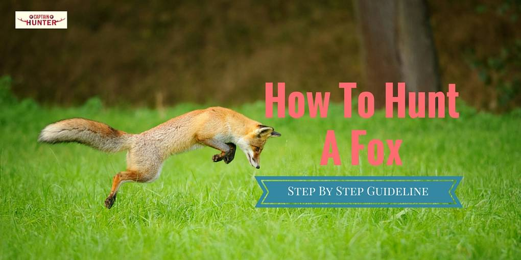 How To Hunt A Fox Cover