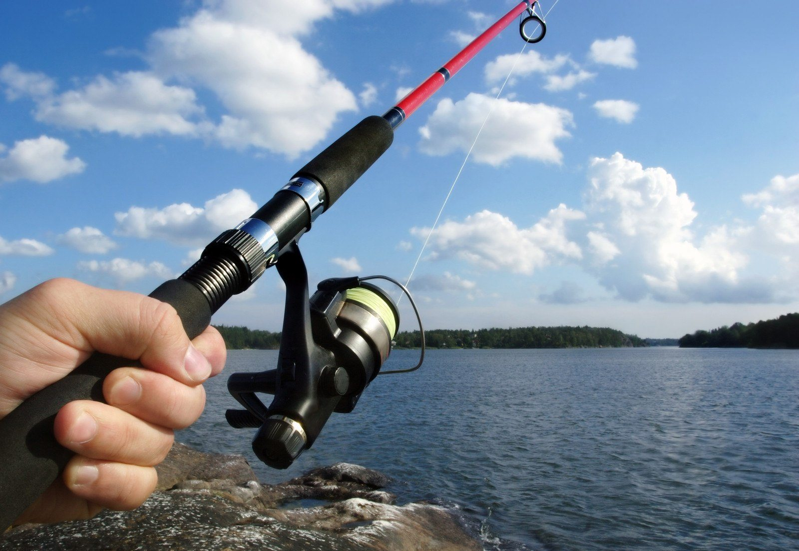 Easy Tutorial on How to Fish: Lessons for a Beginner Angler
