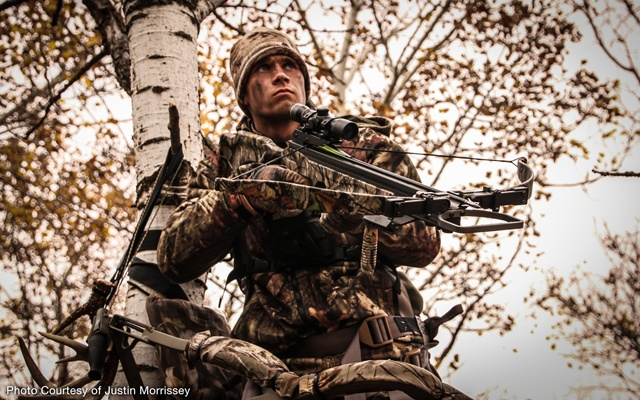 Hunter with a crossbow on a tree stand