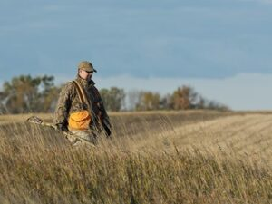 A pheasant hunter - why hunting is good