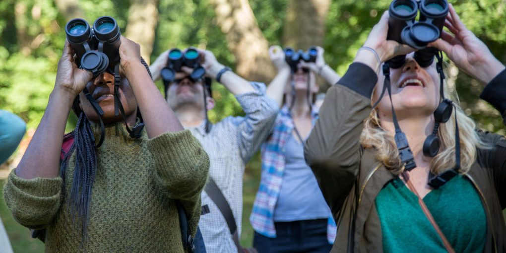 people looking at the sky with binoculars
