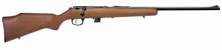 A .22 caliber Remington rifle
