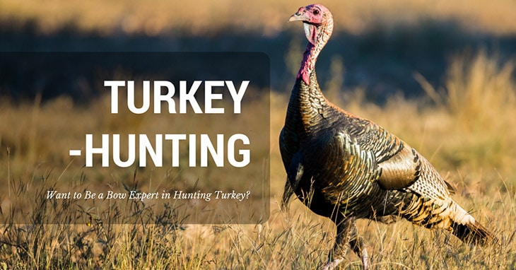 91b347dd846be hunting turkey with bow Archives - Captain Hunter