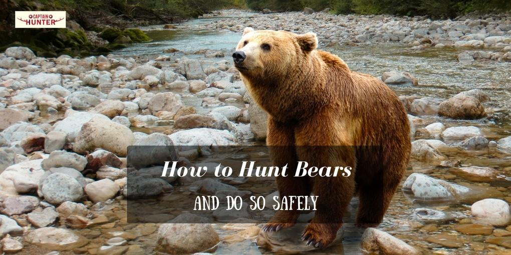 how to hunt bears