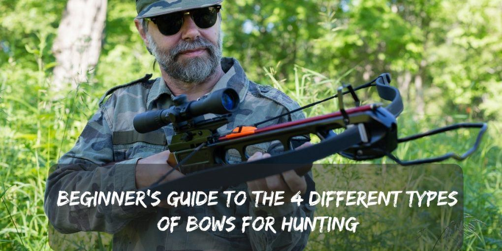 Beginner's Guide to the 4 Different Types of Bows for Hunting