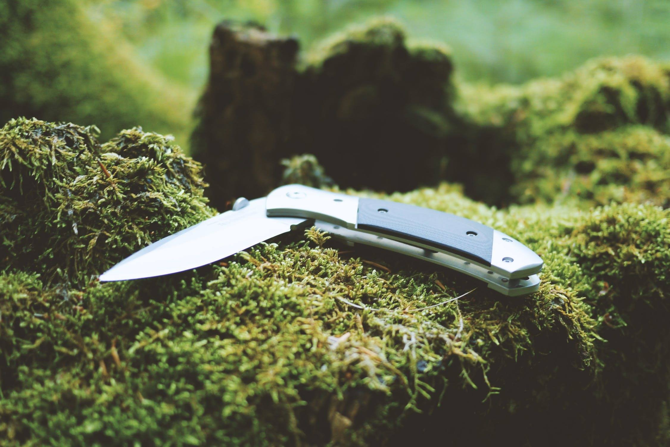 folding hunting knife