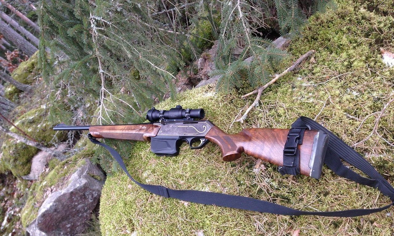 a review on the ruger 22 rifle